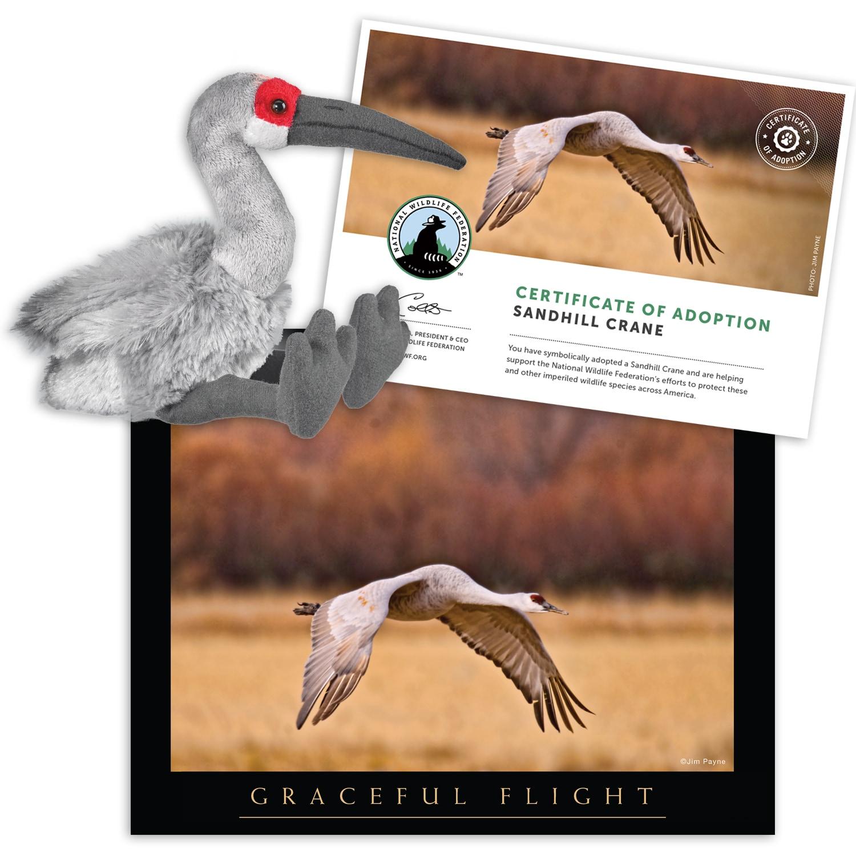 Sandhill Crane National Wildlife Federation >> Adopt A Sandhill Crane Shop Nwf