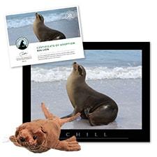 Adopt a Sea Lion