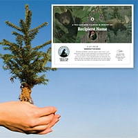 Tree Sponsorship - Memorial