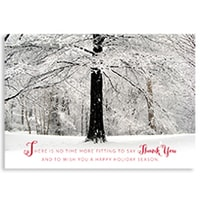 Winter's Canopy Card