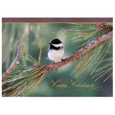 Young Chickadee Card
