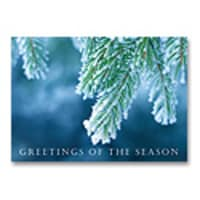 Frosted Pine Card