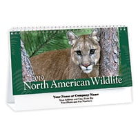 North American Wildlife 2019 Desk Calendar