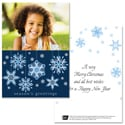 Blue Ribbon Snowflakes - 1 Photo