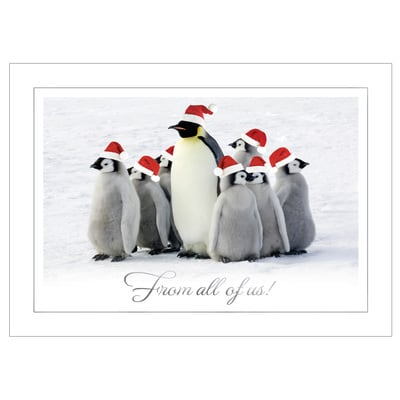 From All of Us Penguins
