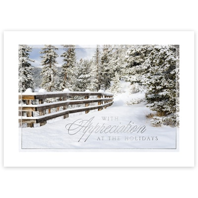 Snowy Appreciation
