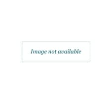 Happy Holidays in Central Park