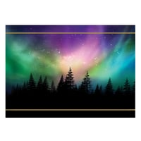 Northern Lights Spectacle