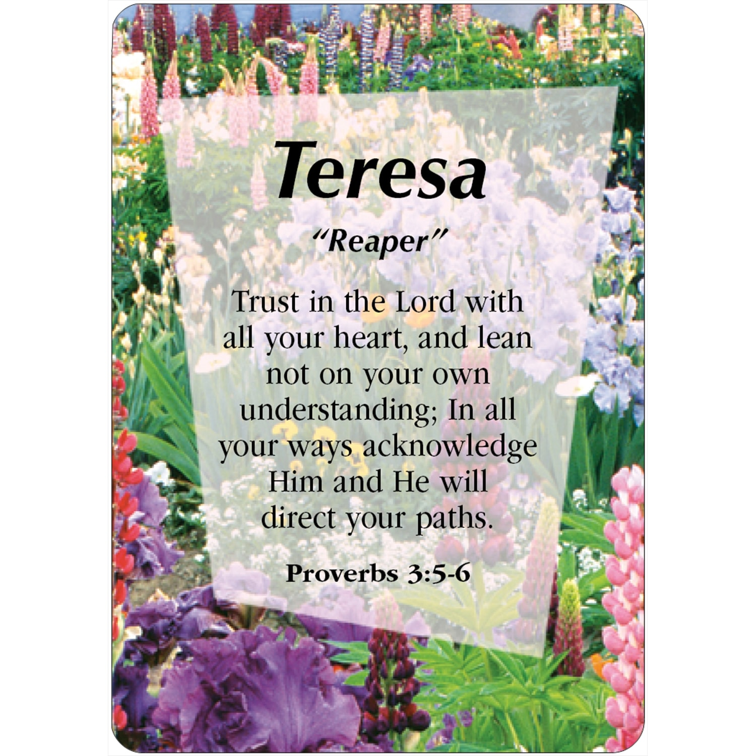TERESA Name Card Female | DayDream Cards