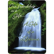 OUR FRIENDSHIP IS A GIFT DreamVerse Friendship