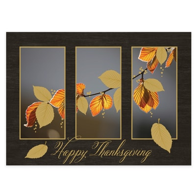 Windows to Fall Card