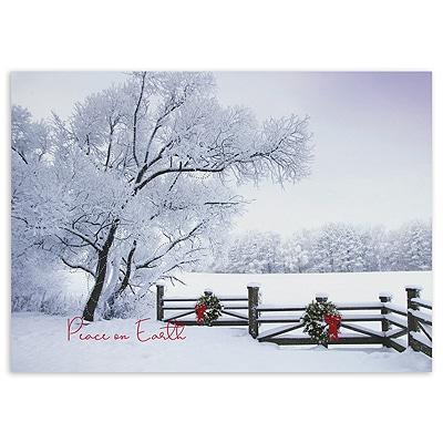 Frosty Winter Scene Peace on Earth
