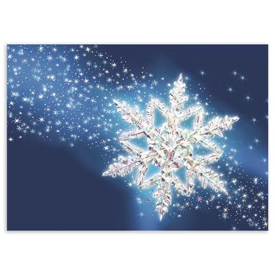 Spectacular Snowflake