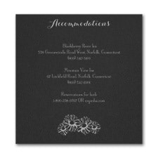 Country Daisies - Accommodation Card - Black