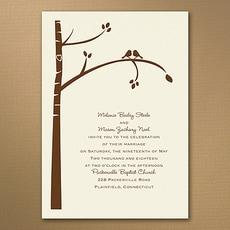 : Birch Tree Love