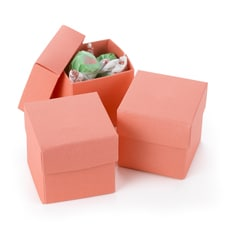 Two-piece Favor Box - Blank - Coral