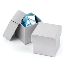 Two-piece Favor Box - Blank - Silver Shimmer