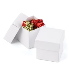 Two-piece Favor Box - Blank - White Shimmer