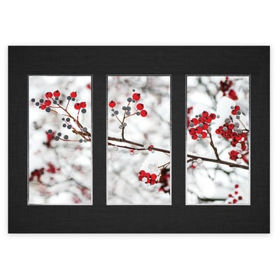 Framed Berries