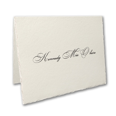 Simply Feather Deckle Note Folder