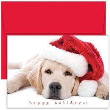 Santa Puppy Boxed Holiday Card