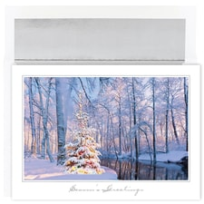 Colorful Tree Holiday Collection Boxed Holiday Card