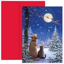 And To All A Goodnight Holiday Collection Boxed Holiday Card