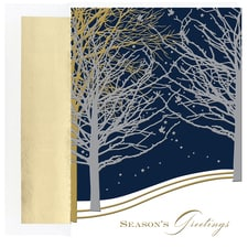 Winter Night Holiday Collection Boxed Holiday Card