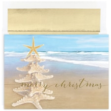 Starfish Tree Warmest Wishes Boxed Holiday Card