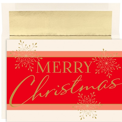 merry christmas flurry holiday collection boxed holiday cards - Boxed Holiday Cards