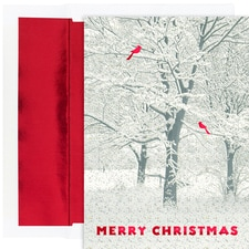Snowy Trees Holiday Collection Boxed Holiday Cards
