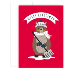 Christmas Bear Holiday Collection Boxed Holiday Cards