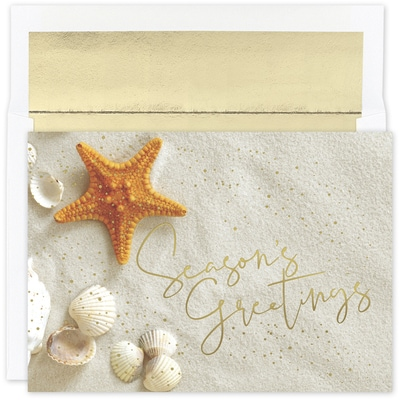 Starfish Greetings Warmest Wishes Boxed Holiday Card