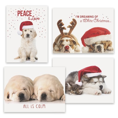 Puppy Love Holiday Assortment Boxed Holiday Card