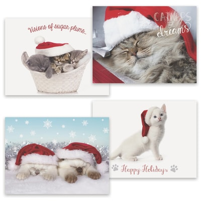 Purrrfect Holidays Assortment Boxed Holiday Card