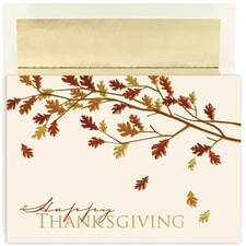 Colorful Leaves Century Boxed Holiday Card