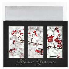 Snow Berries Century Boxed Holiday Card