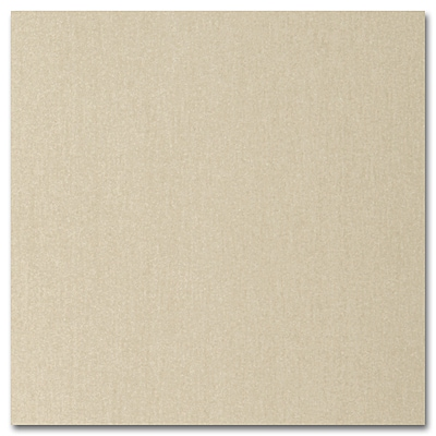 Gold Shimmer Enclosure Card 4 7/8 x 5