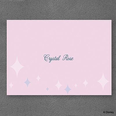 Party Princess - Note Card and Envelope