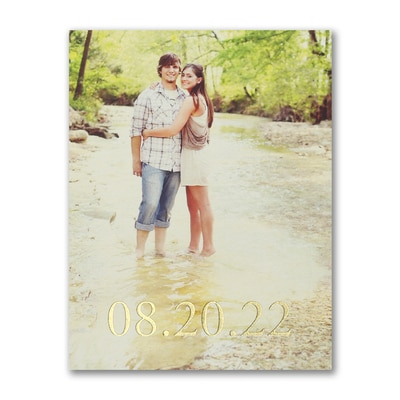 Tie the Knot - Save the Date Postcard