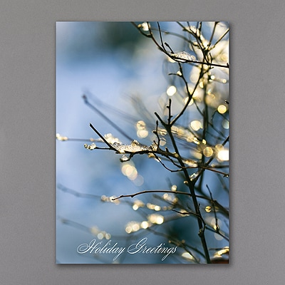 Sparkling Branch - Holiday Card