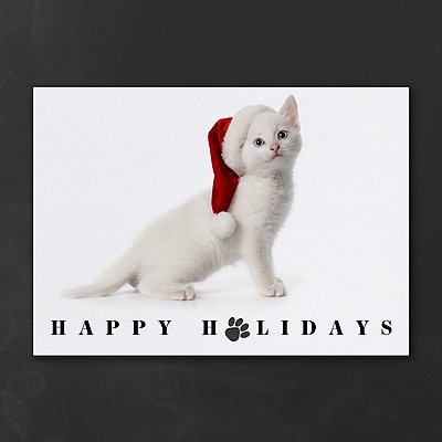 White As Snow - Holiday Card