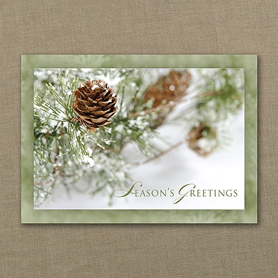 Frosty Pinecones - Holiday Card