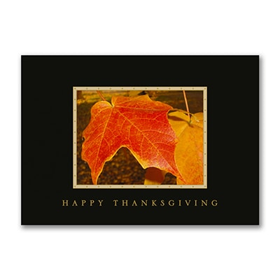 Leaves of Autumn - Thanksgiving Card