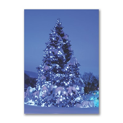 Snow Glow - Holiday Card