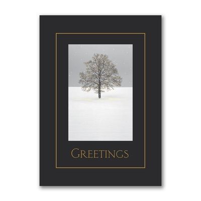 Surrounded - Holiday Card
