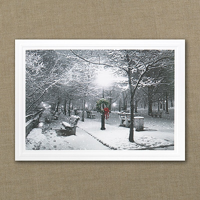 Shining Season - Holiday Card