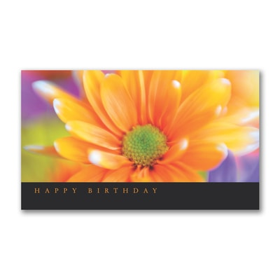 Delightful Daisy - Birthday Card