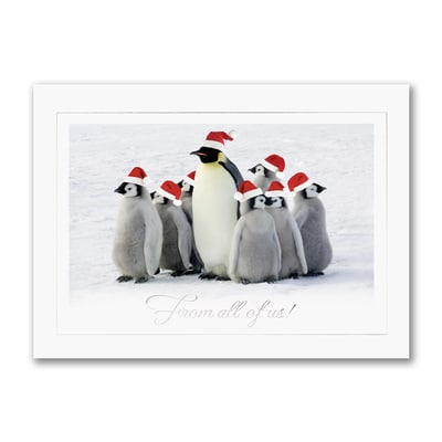 From All of Us Penguins - Holiday Card