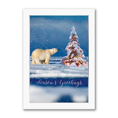 Polar Bear Wonderment